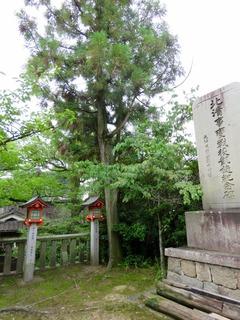 亀森の碑.jpg