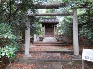 除虫菊神社.jpg