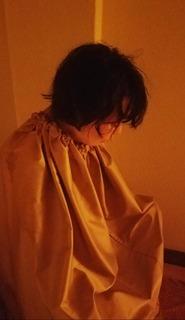 yomogi4.jpg