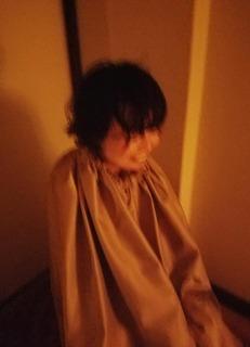 yomogi8.jpg